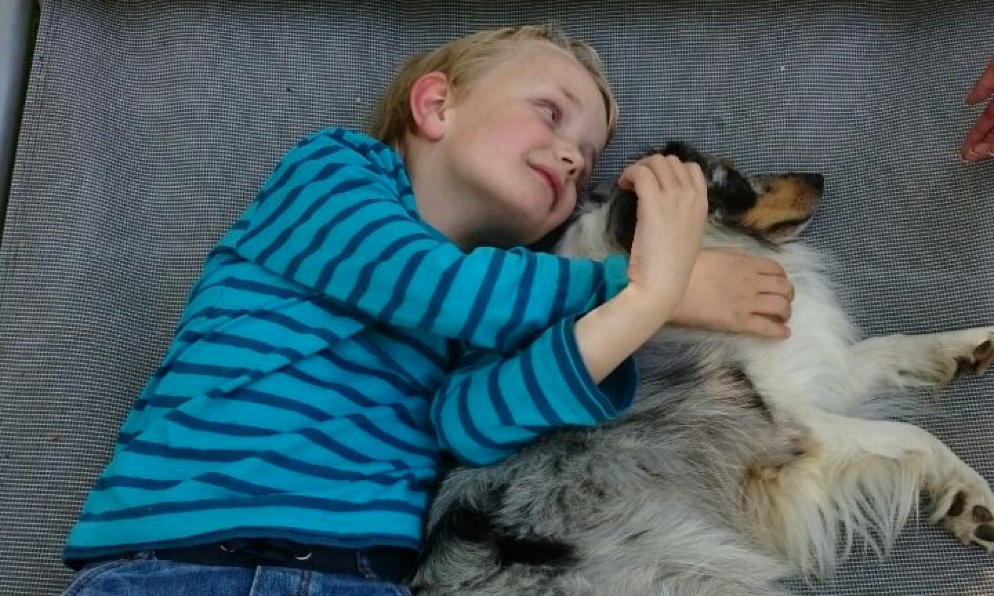 Tiergestützte Therapie Jordan